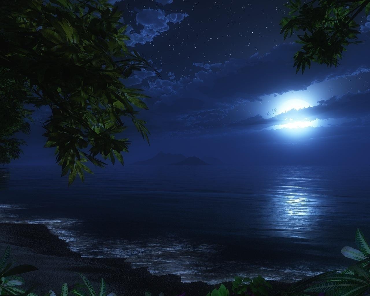 frasi sul mare di notte