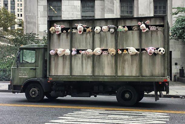 meat_truck04_1224517