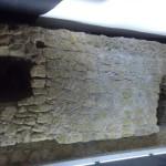 mura aragonesi