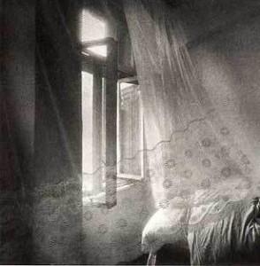 finestra2