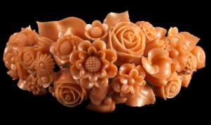 mirabilia coralii 1